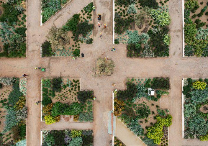 Mediterranean Gardens on the Hill
